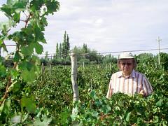 Jean-Pierre Cousinié