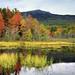 TCS Voyages: la côte Est canadienne
