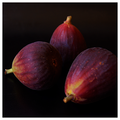 figs© by Haalo
