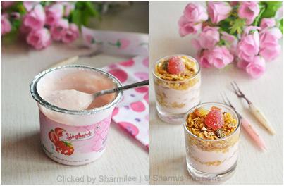 Yogurt Granola Parfait Recipe