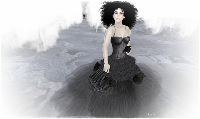 dark tulle & white feathers