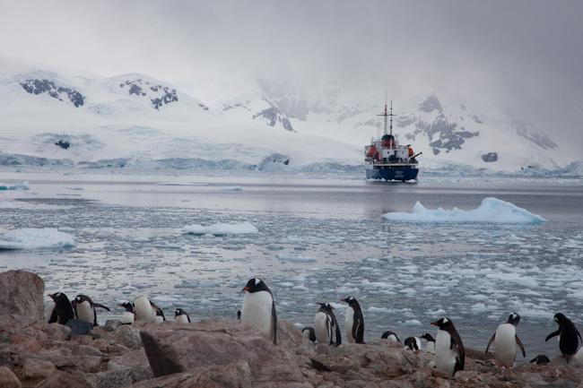 antarctica-blog-70