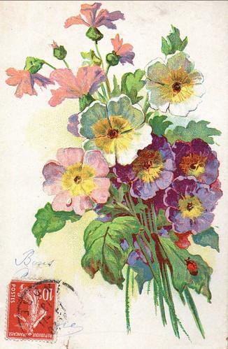 FloralPostCard