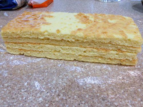 orange-shewtella sponge 001
