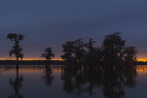 blue sunset lake reflection sunrise canon reflections scott landscape photography dawn golden photo louisiana martin dusk bayou photograph hour swamp etsy waterscape mohrman