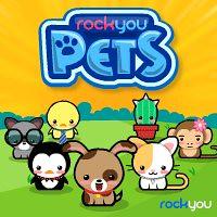 rock you pet