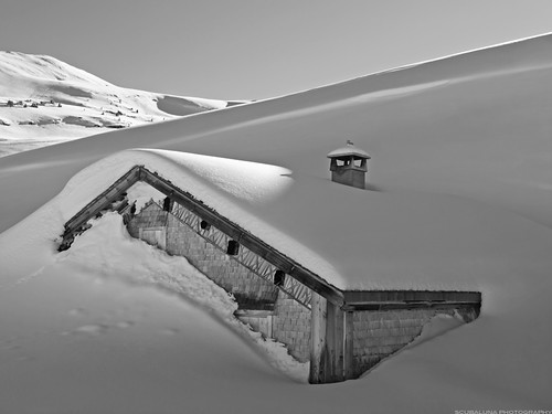 alpine pasture stuck in the snow