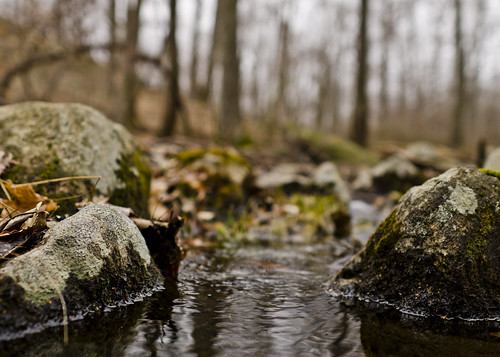 February 25, 2012 - Water Gap