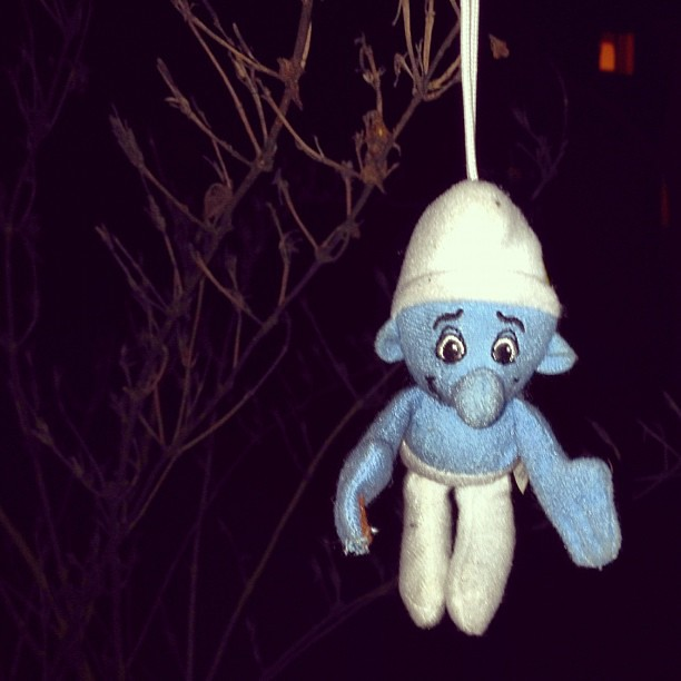 Smurf In Tree Observed During Emo Walk