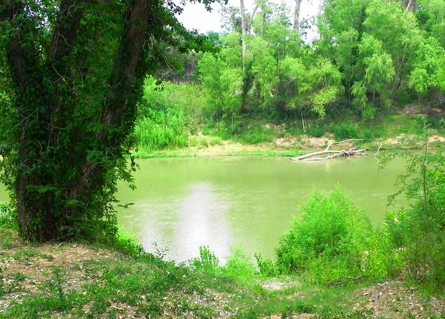 Washington_Texas7