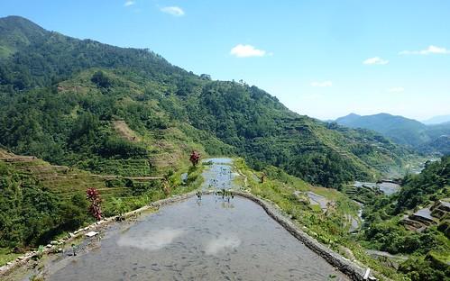 Luzon-Banaue (30)