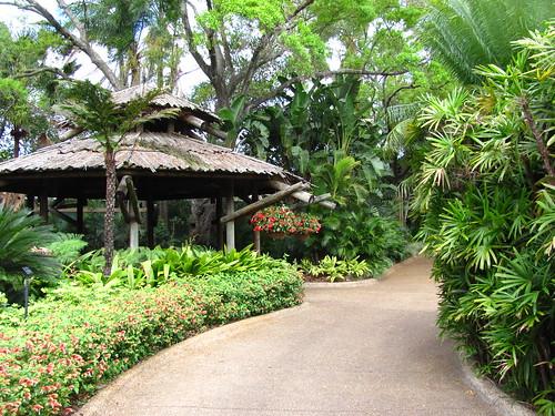 Busch Gardens Tampa 035