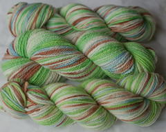 """Dogwood"" on Purewool, Mountain Meadow, Beloved Superwash ( ...a time to dye)"