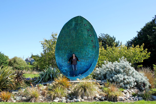 Giant paua shell