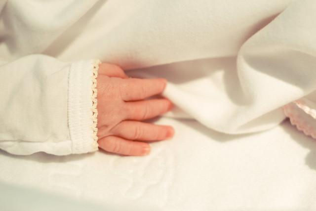 133/365 Tiny fingers