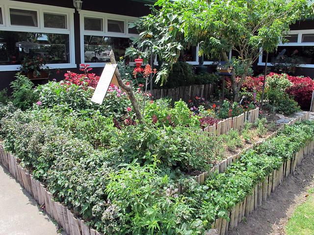 Horta de cheiros