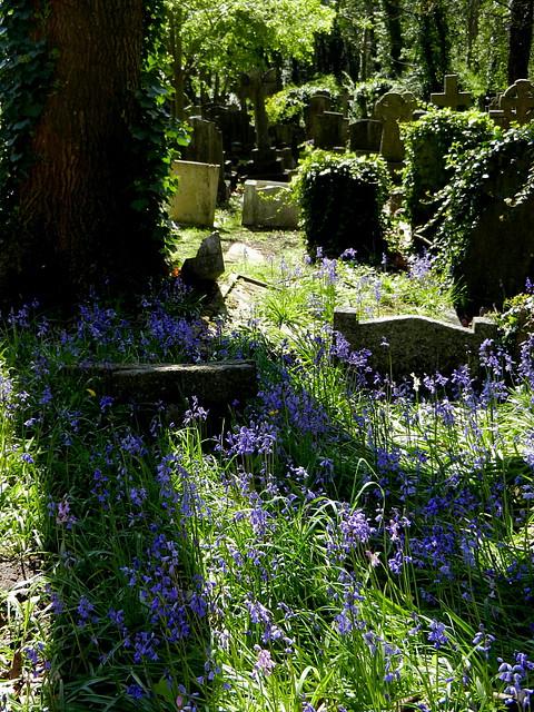 Highgate Cemetery_10