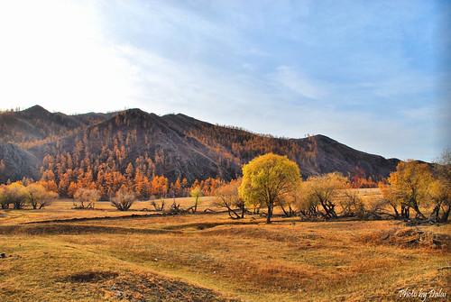 namar mongolianlandscape