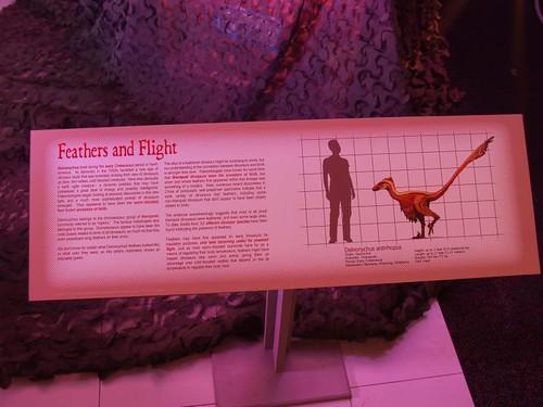 exhibit info