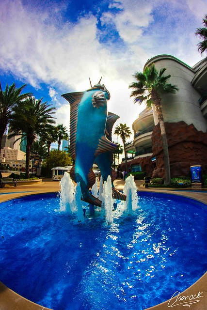 Houston Downtown Aquarium Flickr - Photo Sharing!