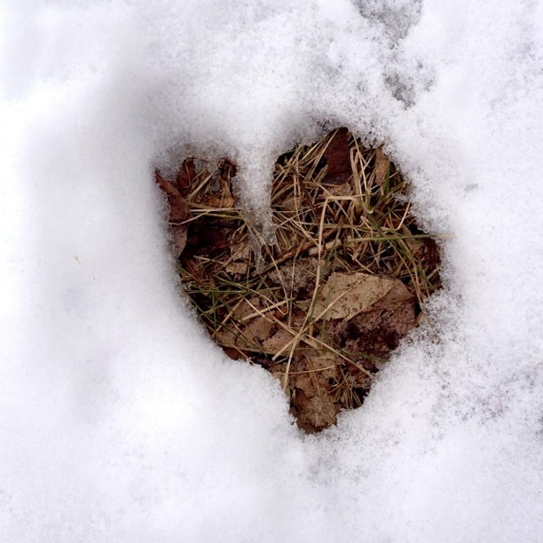 Heart-shaped hoof print