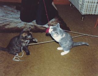 Suzy and Daisy, Summer 1980
