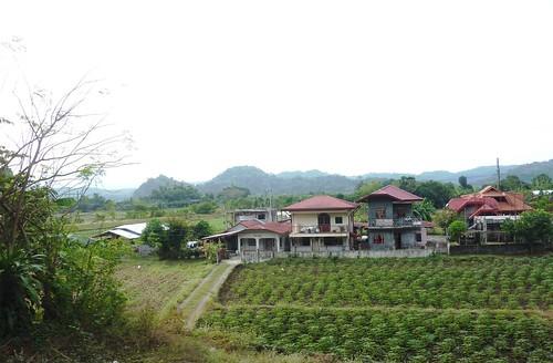Luzon-San Fernando-Baguio (4)