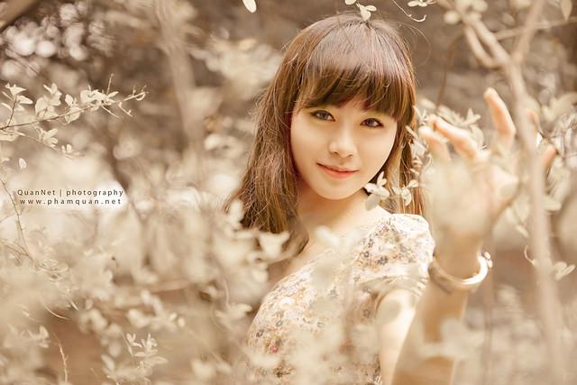 Memories - Hoàng Yến Yến