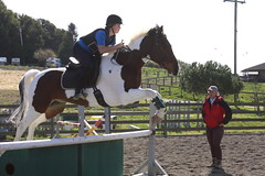 physical exercise(0.0), animal sports(1.0), equestrianism(1.0), english riding(1.0), modern pentathlon(1.0), eventing(1.0), stallion(1.0), show jumping(1.0), hunt seat(1.0), equestrian sport(1.0), sports(1.0), recreation(1.0), outdoor recreation(1.0), equitation(1.0), horse(1.0), jockey(1.0), person(1.0),