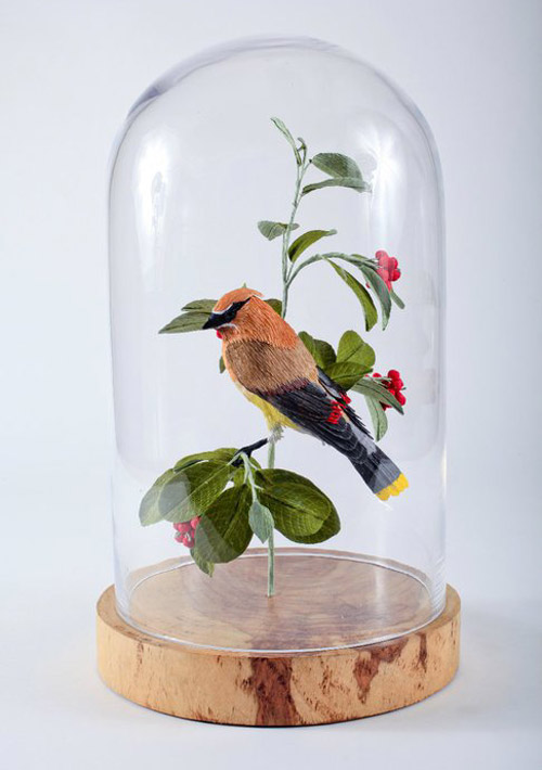 vegan-taxidermy4