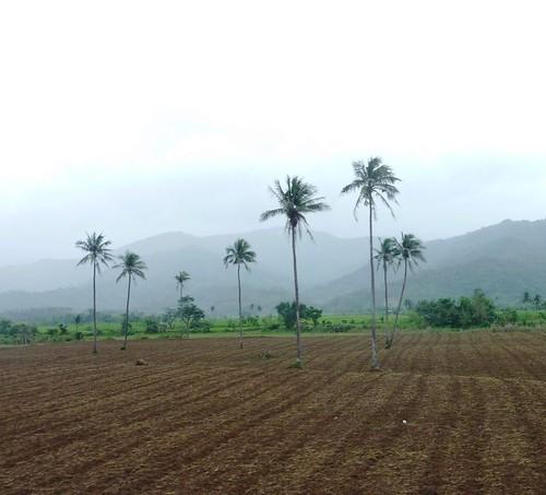 Luzon-Tuguegarao-Santa Ana (126)