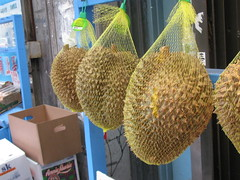 arecales(0.0), flower(0.0), plant(0.0), fruit(0.0), crop(0.0), yellow(1.0), produce(1.0), food(1.0), durian(1.0),