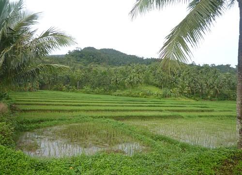 Luzon-Claveria-Laoag (13)