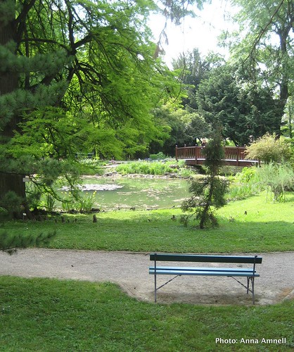 Zagreb Botanical Garden 2 by Anna Amnell