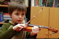 sequoia practicing violin    MG 8801