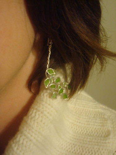 Pretty New Earrings!