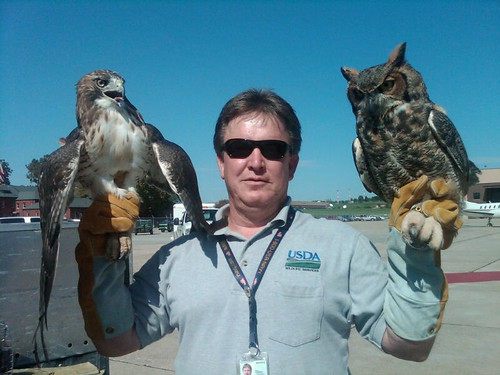 Marie Griffin and/or Steve Baumann hold raptors that will be relocated