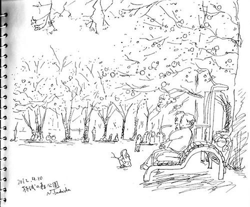 林試の森公園 1