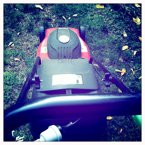 Mowing the lawn. Day 47/366.