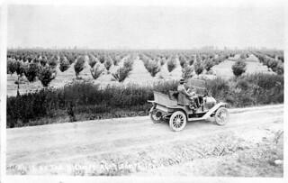 [IDAHO-J-0106] Nampa Orchard