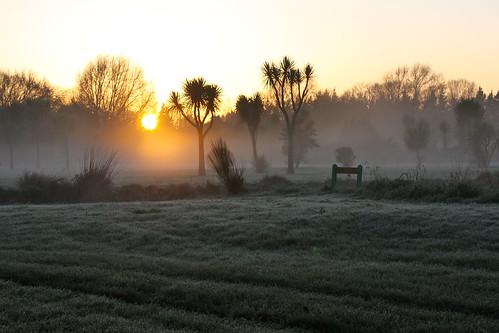 light mist sunrise landscape masterton