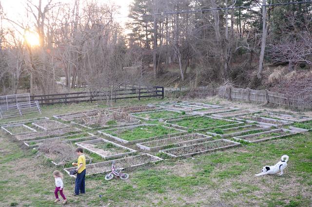 Garden Journal March 3
