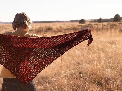 Sherilyn Shawl