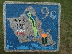 Hawaii Prince Golf Club 446