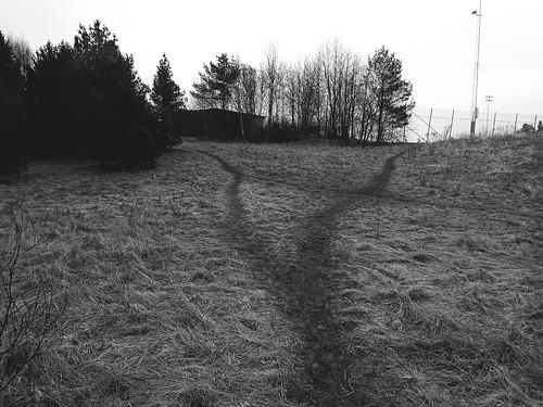 Korsvägar
