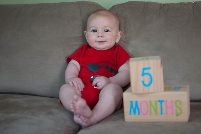 05 months-1