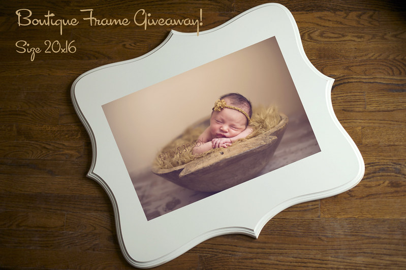 Bitsy Baby Photography frame giveaway