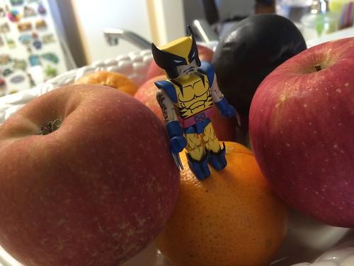 Xman Fuitcake Series – Wolverinetot #004