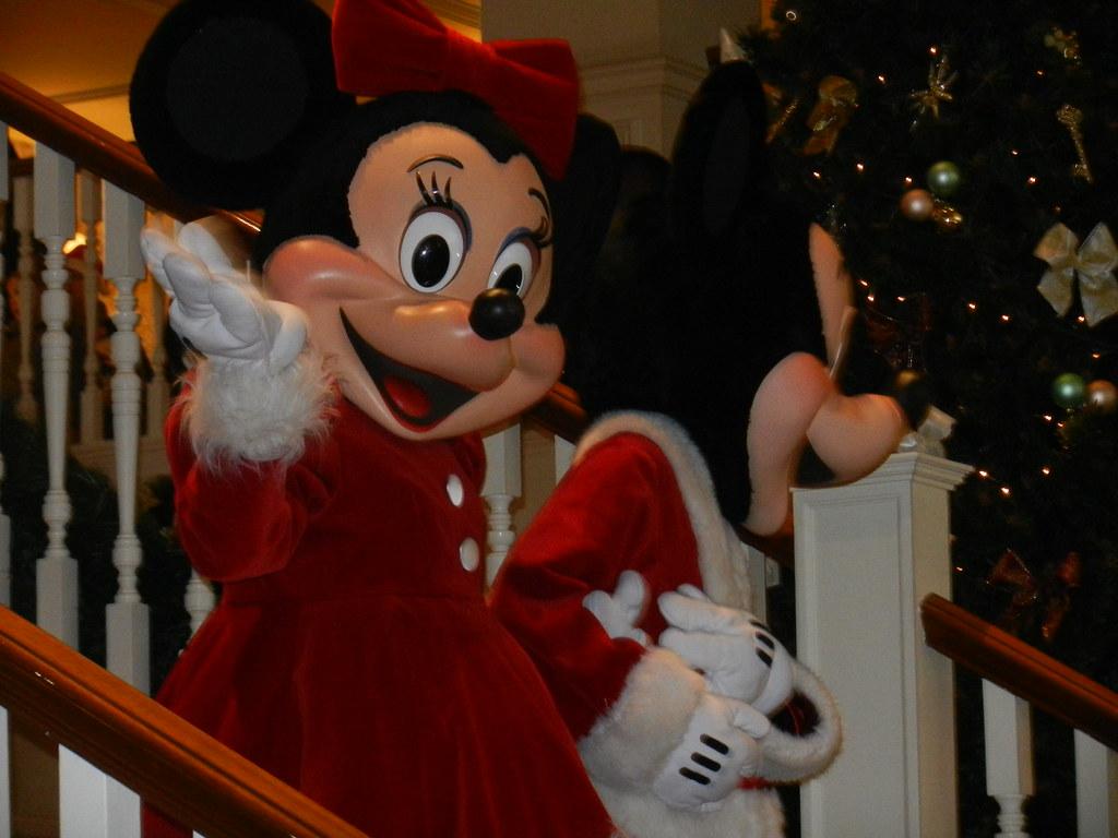 Un séjour pour la Noël à Disneyland et au Royaume d'Arendelle.... - Page 4 13693341813_f2ceaa05b1_b