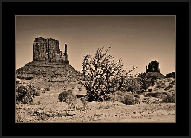 Navajo Land bw